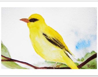 Golden Oriole Bird Painting, Original Art, Original Watercolor Painting, Nursery Art Painting, One of a Kind, Childrens Art by Tatjana Ruzin