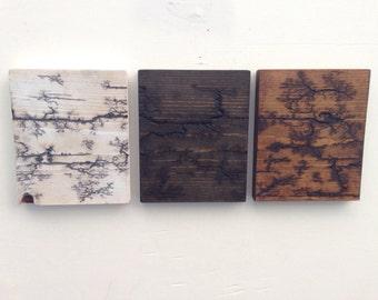 Reclaimed Wood Lichtenberg Figure Wall Art - Free Shipping - Three Piece Fractal Wall Hanging Set