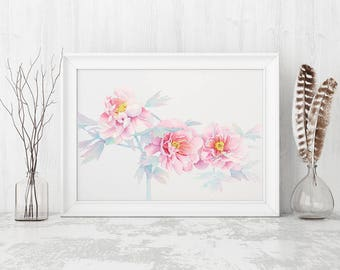 Peony watercolour painting, floral, peonies, flower watercolor print,