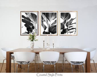 Set Of 3 Prints, Black and White Prints, Banana Leaves Print, Designer Wall Art, Tropical Print, Botanical Art, Posters, Prints, Palm Leaves