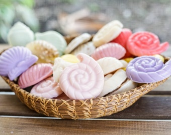 6 Shell Soaps