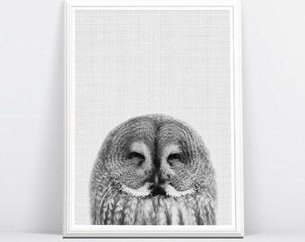 Owl Print, Nursery Art, Printable Woodlands, Owl Print, Owl Wall Art Print, Nursery Forest Decor, Baby Woodland Decor, Wilderness Wall Art