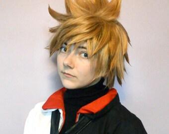 Kingdom Hearts Ventus/Roxas Wig