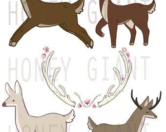 Deer Clip Art Set