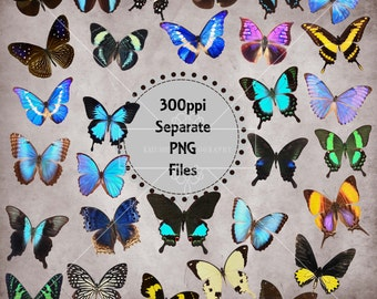 Beautiful Butterfly Overlays, Separate PNG Files with Transparent Backing, High Resolution, Instant Download.