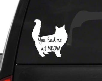 You had me at meow! Cat decal!