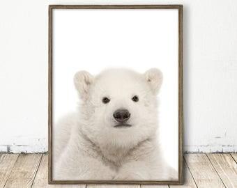 polar bear print, baby polar bear, polar bear art, polar bear poster, arctic print, arctic decor, bear decor, nordic bear art, nordic nurery