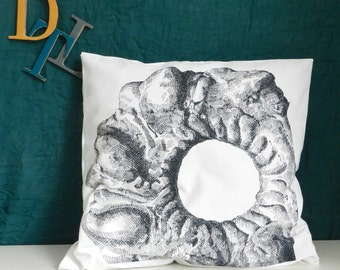 Decorative cookie print pillow cover