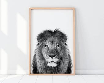 Lion Printable, Black And White Lion Print, Nursery Art, Safari Animal, Nursery Animal Wall Art, Jungle Animal, Lion Instant Download Poster