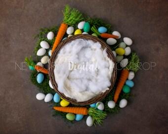 Newborn Easter Digital Backdrop Background Nest