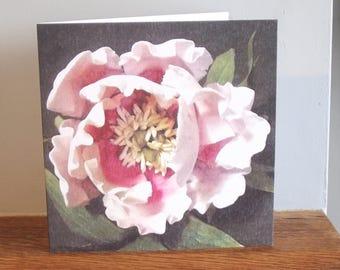 Peony Sugarcraft Flower greeting card, flower card, easter card, flowers