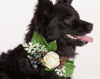 LITTLE FAWN- Wedding Dog Collar, Dog Flower Crown, Floral Dog Collar, Spring Wedding, Boho Wedding, Bohemian Wedding, Dog Flower Girl,Wreath