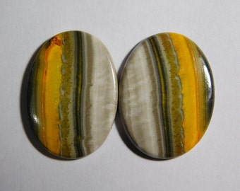 pair Top grade Bumble bee jasper cabochon Loose Stone Beautiful Bumble bee Jasper Gemstone Excellent Quality 35cts.