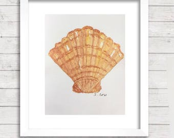 Watercolor seashell painting, Shell Print of  Original nature painting, Fan shell, scallop shell, Beach art, bathroom art,  kitchen art