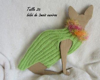clothes for baby sphynx