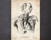 Weird illustration Horror gift Heart anatomy print Scary art CA102