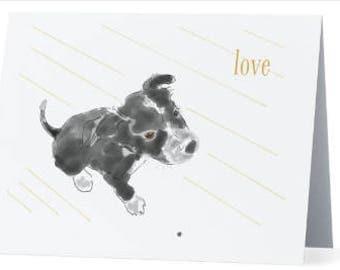 Crouton love