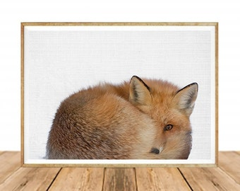 Babies Room Fox Art,Digital Download,Fox Cub Print, Woodlands Nursery Decor, Baby Animal Poster,  Large Printable Photo Poster