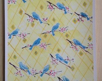 Blue Birds on a Branch -Archival Print of Original Gouache Painting