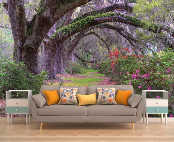 Tree wallpaper forest wallpaper tree wall mural nature wall for 3d wallpaper for home in malaysia
