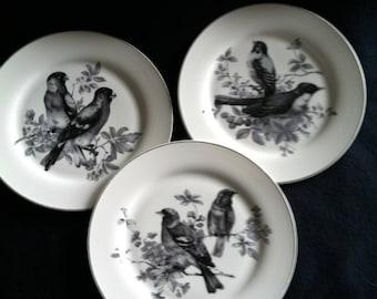 Grace's Teaware Bird plates