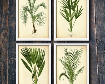 Set of Four Tropical Wall Art Prints, Palm Trees, Green Leaves, Printable Large Posters, Digital Download, Photo Modern Decor (#4131-4134)