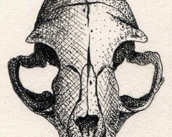 Original Cat Skull Mini Drawing