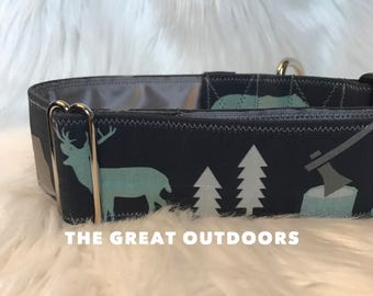 The Great Outdoors: camping dog collar, boy dog collar