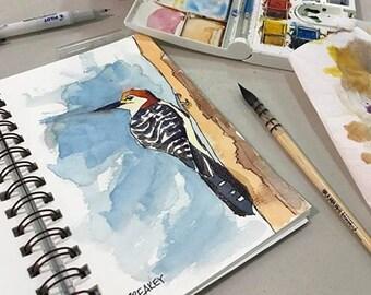 Original Watercolor Painting - Red Bellied Woodpecker