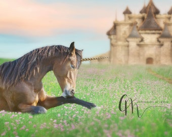 Unicorn fantasy digital backdrop