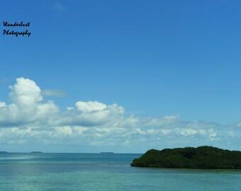 Tropical Island Print