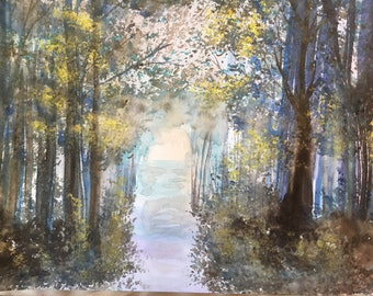 Peaceful Woods...