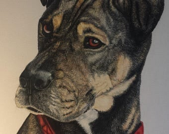 Custom Pet Portraits in pencil, acrylic, chalk, charcoal, water color