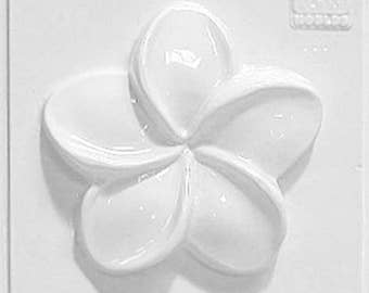 Small Plastic Mould 2226 - Frangipani Flower 14cm x 14cm
