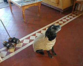 Hand knitted  aran dog jumper im oatmeal and modelled by Moley a labrador cross