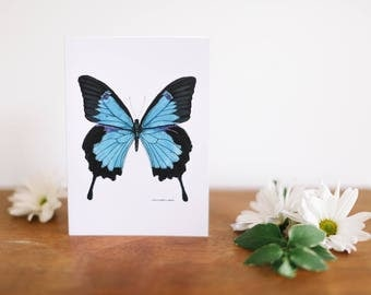 Blue Butterfly Greeting Card and Note Card