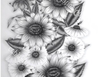 """art print of original graphite drawing  12"""" x 16"""" -summer flowers- Sunflowers and Daisies-Bee and Ladybug"""