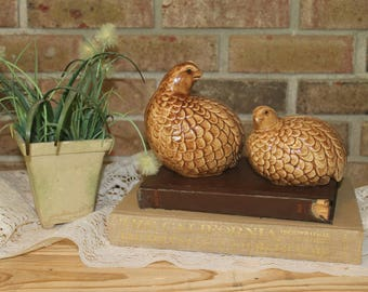 Vintage Ceramic Birds-Mother and Baby Bird-Brown Bird Figurines-Farmhouse Decor-French Country-Wedding Decor-Vintage Decor-Ceramic Quails