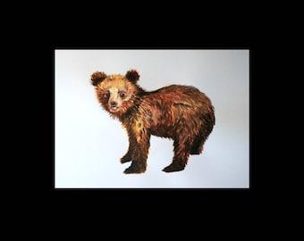 Postcard bear / 1 postcard A6