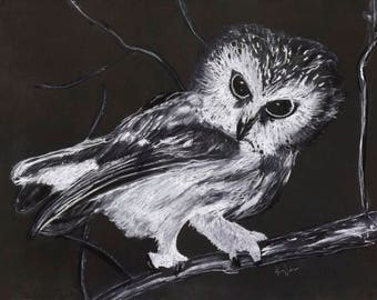 A4 print owl, standing fox, sitting fox, wolf or magpie