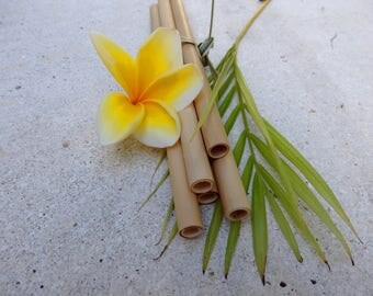 Bamboo straws 8 set natural design with style