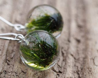 Moss Earrings, Resin Earrings, Sterlin Silver Moss, Resin Ball Earrings, Woodland Earrings, Botanical, Forest Jewelry