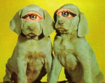 Big Eye Dog Freak, Kitsch Puppy Decor, Brothers Gift, Freaky Pup Artwork, Cute Creepy Decor, Weimaraner Weirdness, Original Collage