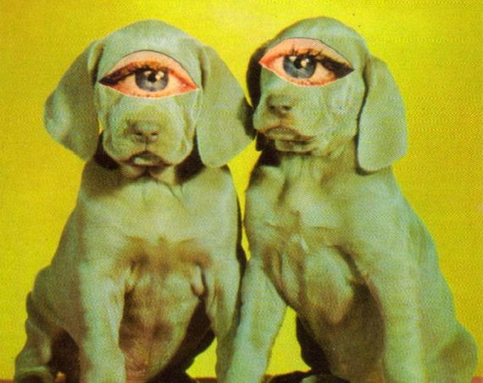 Big Eye Puppy Dog Art Collage, Kitsch Artwork Postcard