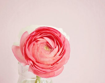 Shabby chic decor, flower photography, still life ohotography, nature photography, coral, pink, ranunculus, garden flowers - Oh So Pretty