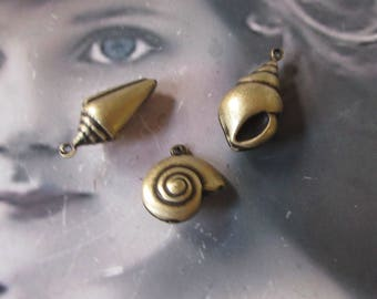 Brass Ox Plated Brass  Shell Charm Assortment  1005BOX x3