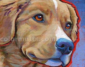 DUCK TOLLING Retriever Dog Art Original Portrait Painting 6x6 by Lynn Culp