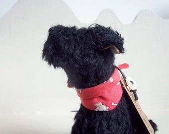 little sitting black mohair terrier