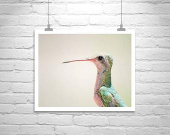 Bird Photography, Bird Picture, Hummingbird Art, Wildlife Print, Cute Animals, Wildlife Photography, Hummingbird Print, Art for Kitchen