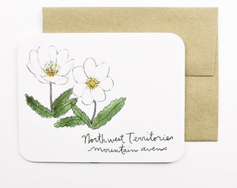 Northwest Territories | Mountain avens | Flowers of the Provinces and Territories of Canada card with envelope | Canadian flowers